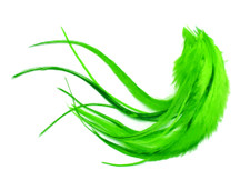 1 Dozen - Medium Solid Lime Green Rooster Saddle Whiting Hair Extension Feathers