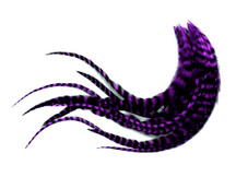 1 Dozen - Medium Purple Grizzly Rooster Saddle Whiting Hair Extension Feathers
