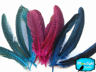 Hot Pink Guinea Wing Feathers Dyed Image 1