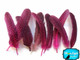 Hot Pink Guinea Wing Feathers Dyed Image 2