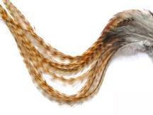 6 Pieces - Xl Bleached Grizzly Thick Rooster Hair Extension Feathers