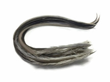 6 Pieces - Solid Grey Variant Thick Long Rooster Hair Extension Feathers