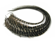6 Pieces - Tan Grizzly Thick Long Rooster Hair Extension Feathers