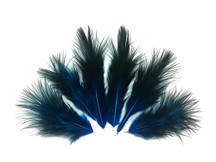 1 Dozen - Solid Turquoise Blue & Black Mini Rooster Chickabou Fluff Whiting Hair Feathers