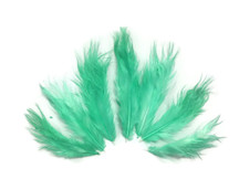 1 Dozen - Solid Mint Green Mini Rooster Chickabou Fluff Whiting Hair Feathers