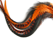 8 Pieces - Peekabooo Mix Thick Long Rooster Hair Extension Feathers