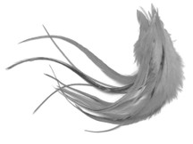 1 Dozen - Medium Solid Gray Rooster Saddle Whiting Hair Extension Feathers