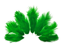 1 Dozen - Solid Kelly Green Mini Rooster Chickabou Fluff Whiting Hair Feathers