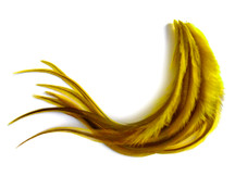 1 Dozen - Medium Yellow Badger Rooster Saddle Whiting Hair Extension Feathers