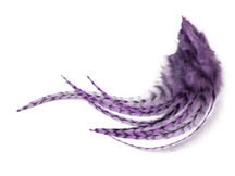 1 Dozen - Medium Lavender Grizzly Rooster Saddle Whiting Hair Extension Feathers