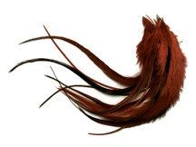 1 Dozen - Medium Solid Brown Rooster Saddle Whiting Hair Extension Feathers