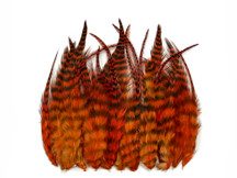 1 Dozen - Short Orange Grizzly Whiting Farm Rooster Saddle Hair Extension Feathers