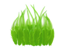 1 Dozen - Short Solid Lime Green Whiting Farm Rooster Saddle Hair Extension Feathers