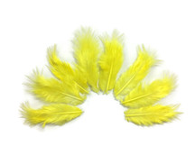 1 Dozen - Solid Sunshine Yellow Mini Rooster Chickabou Fluff Whiting Hair Feathers