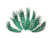 1 Dozen - Mint Green Grizzly Mini Rooster Chickabou Fluff Whiting Hair Feathers