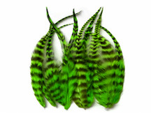1 Dozen - Short Lime Green Grizzly Whiting Farm Rooster Saddle Hair Extension Feathers