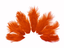 1 Dozen - Solid Orange Mini Rooster Chickabou Fluff Whiting Hair Feathers