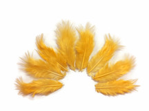 1 Dozen - Solid Tangerine Mini Rooster Chickabou Fluff Whiting Hair Feathers