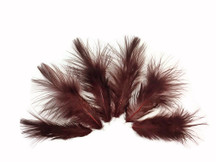 1 Dozen - Solid Brown Mini Rooster Chickabou Fluff Whiting Hair Feathers