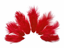 1 Dozen - Solid Red Mini Rooster Chickabou Fluff Whiting Hair Feathers