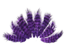 1 Dozen - Purple Grizzly Mini Rooster Chickabou Fluff Whiting Hair Feathers