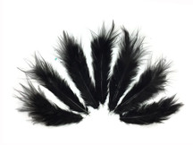 1 Dozen - Solid Black Mini Rooster Chickabou Fluff Whiting Hair Feathers