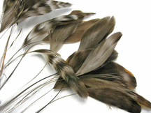 1 Dozen - Natural Chinchilla Stripped Rooster Coque Tail Feathers