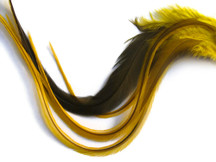 6 Pieces - XL Yellow Badger Thick Rooster Hair Extension Feathers