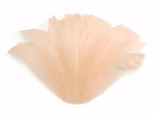 "1/4 Lb - 2-3"" Champagne Goose Coquille Loose Wholesale Feathers (Bulk)"