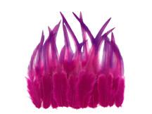 1 Dozen - Raspberry Blendz Short Whiting Farm Rooster Saddle Hair Extension Feathers