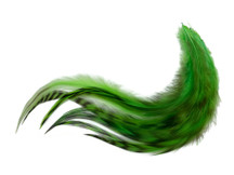 1 Dozen - Medium Unique Lime Rooster Saddle Whiting Hair Extension Feathers