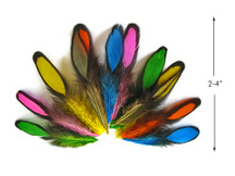 1 Dozen - Multi Color Whiting Farms Laced Hen Saddle Mix Feathers