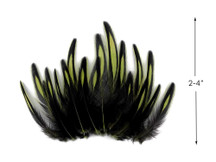 1 Dozen - Olive Green Whiting Farms BLW Laced Hen Cape Loose Feathers