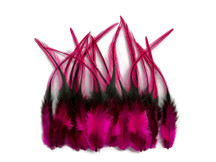 1 Dozen - Short Hot Pink Badger Whiting Farm Rooster Saddle Hair Extension Feathers