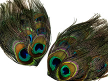 1 Piece - Natural Iridescent Green Uncut Peacock Eye Handmade Feather Pad