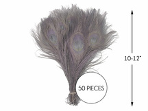 """50 Pieces – Silver Gray Bleached & Dyed Peacock Tail Eye Wholesale Feathers (Bulk) 10-12"""" Long"""