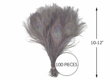 """100 Pieces – Silver Gray Bleached & Dyed Peacock Tail Eye Wholesale Feathers (Bulk) 10-12"""" Long"""