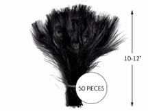 """50 Pieces – Black Bleached & Dyed Peacock Tail Eye Wholesale Feathers (Bulk) 10-12"""" Long"""