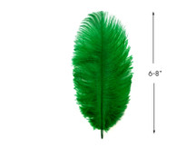 "10 Pieces - 6-8"" Kelly Green Ostrich Dyed Drabs Body Feathers"