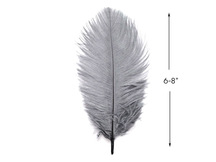 "10 Pieces - 6-8"" Grey Ostrich Dyed Drabs Body Feathers"