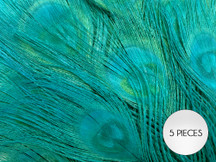 """5 Pieces – Peacock Green Bleached & Dyed Peacock Tail Eye Feathers 10-12"""" Long"""