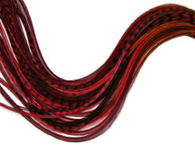 6 Pieces - Phoenix Blendz Thin Long Rooster Hair Extension Feathers