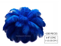 "100 Pieces - 6-8"" Royal Blue Wholesale Ostrich Drabs Feathers (Bulk)"