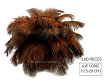 "100 Pieces - 6-8"" Brown Wholesale Ostrich Drabs Feathers (Bulk)"