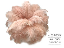 "100 Pieces - 6-8"" Champagne Wholesale Ostrich Body Drabs Feathers (Bulk)"