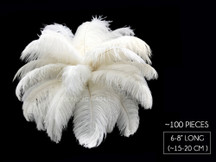 "100 Pieces - 6-8"" Off White Ostrich Drabs Body Wholesale Feathers (Bulk)"