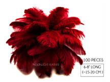 "100 Pieces - 6-8"" Claret Ostrich Drabs Body Wholesale Feathers (Bulk)"