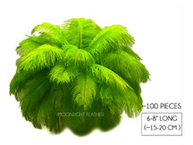 "100 Pieces - 6-8"" Lime Green Wholesale Ostrich Drabs Feathers (Bulk)"