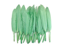 1 Pack - Aqua Green Dyed Duck Cochettes Loose Wing Quill Feather 0.30 Oz.