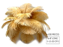 "100 Pieces - 6-8"" Old Gold Ostrich Drabs Body Wholesale Feathers (Bulk)"